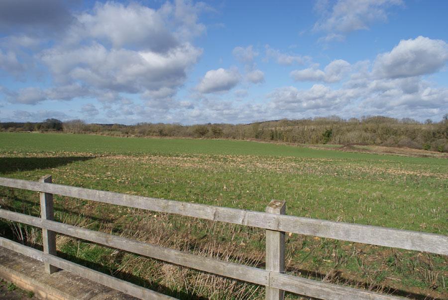 View from Fenn Close Nassington